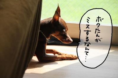 2012_10_02_9999_9.jpg