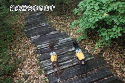 2012_10_07_9999_16.jpg