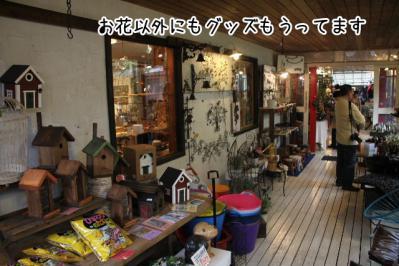 2012_10_07_9999_23.jpg