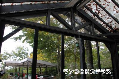2012_10_07_9999_28.jpg