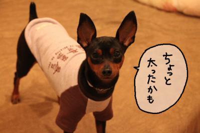 2012_10_08_9999_9.jpg