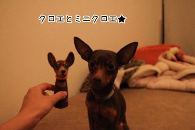 2012_10_15_9999_14.jpg