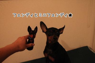 2012_10_15_9999_27.jpg