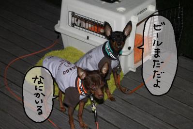 2012_10_20_9999_406.jpg