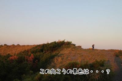 2012_10_21_9999_13.jpg