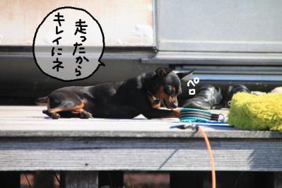 2012_10_21_9999_146.jpg