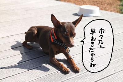2012_10_21_9999_176.jpg