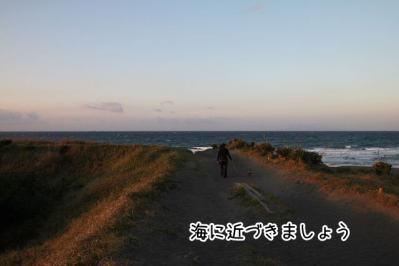 2012_10_21_9999_17.jpg