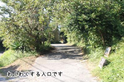 2012_10_21_9999_187.jpg