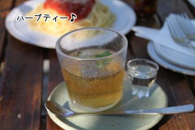 2012_10_21_9999_212.jpg