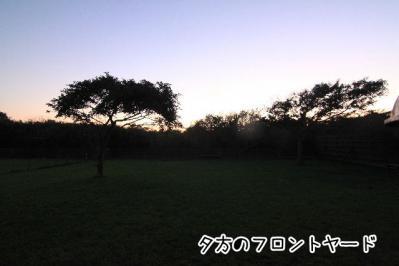2012_10_21_9999_228.jpg