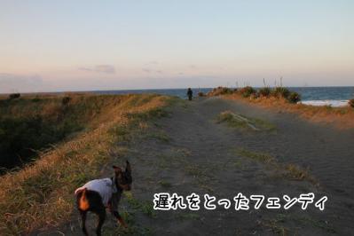 2012_10_21_9999_23.jpg