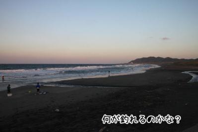 2012_10_21_9999_28.jpg