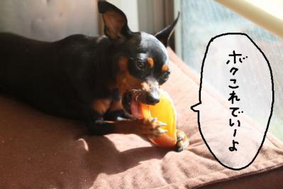 2012_11_08_9999_6.jpg