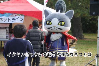 2012_11_18_9999_17.jpg