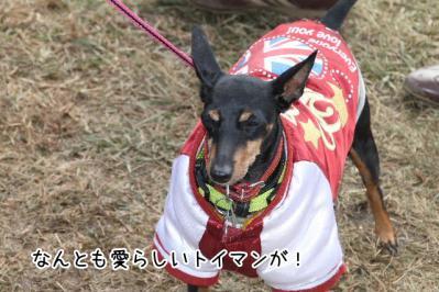 2012_11_18_9999_34.jpg