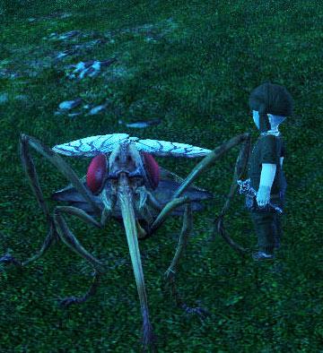 ffxivgame-2011-03-04-15-07-.jpg