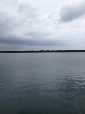 14日 港外側移動_convert_20120818121348