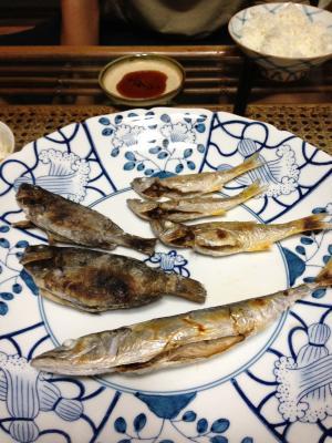 14日 焼き魚_convert_20120818121649