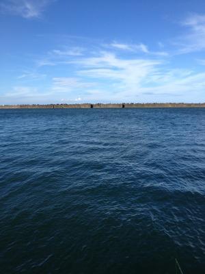 15日 海水浴後、釣り_convert_20120818122525