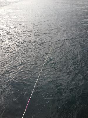 釣り開始_convert_20120903123154