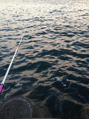 釣り開始_convert_20121008231401