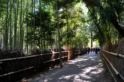 嵐山竹間の小径