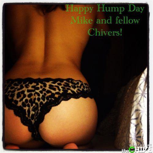 hump-day-18_2013120817372554e.jpg
