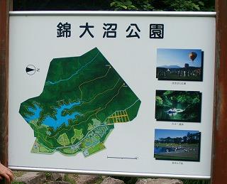 錦大沼公園100717
