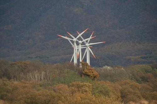 風車101106p2