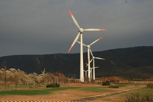 風車101106p7