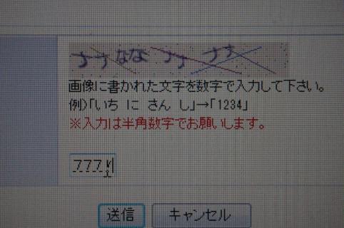 IMGP1642.jpg