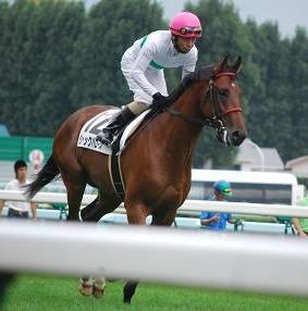 9・札幌・返し馬1