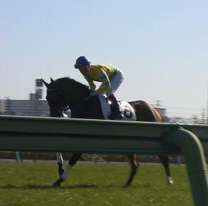 1・新春・返し馬