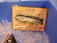 鮭児証明書