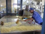 機械麹菌を繁殖