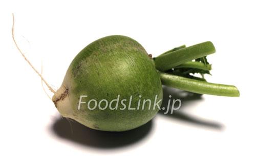 緑の辛味大根 カザフ辛味大根