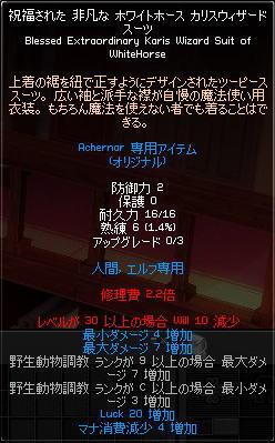20101107_11.jpg