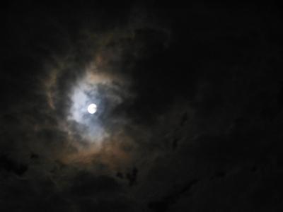 N_皆既月食2