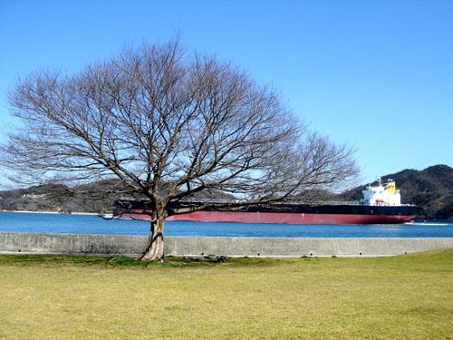 mukaishima 2