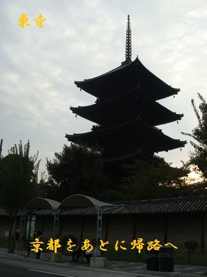 DSC03321-1.jpg