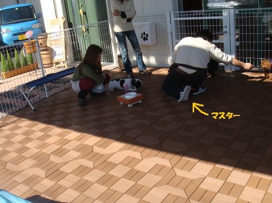 DSC03446.jpg