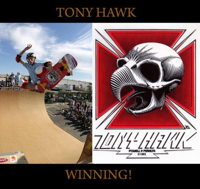 tony hawk 640x604n