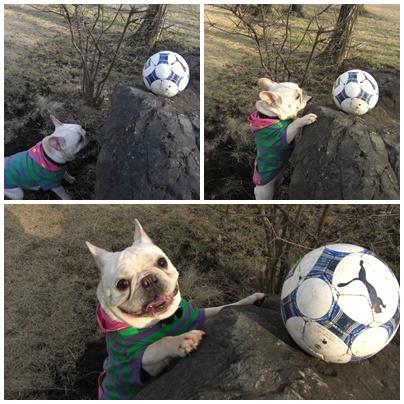 ぼーサッカーボール