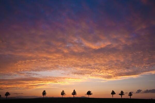 久々の綺麗な夕焼け メルヘンの丘