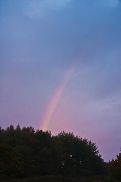 今朝5時半頃の虹です