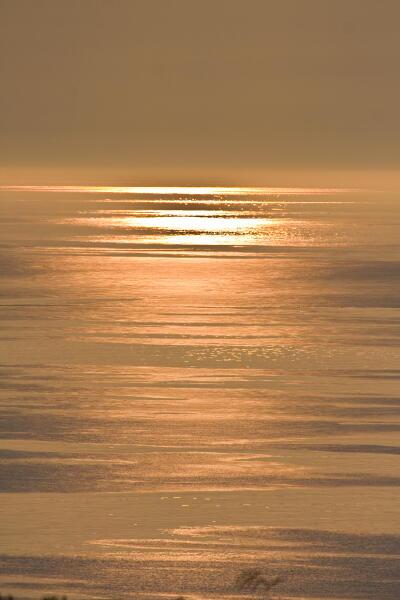 セピアの海
