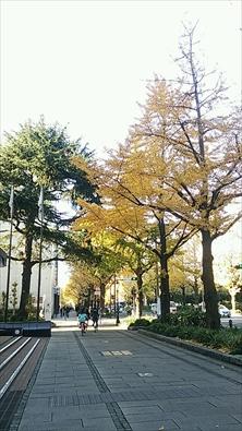 hataguchiakane20131201004_R.jpg