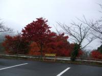 2010_1122奈良 明日香村0017