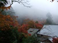 2010_1122奈良 明日香村0027
